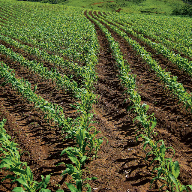 The Payoff From Precision Agriculture The John Deere Journal