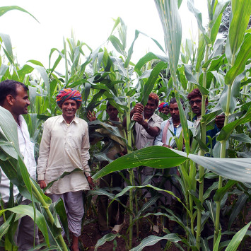 Joint_Initiative_for_Village_Advancement_Farmers