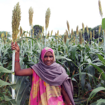 Joint_Initiative_for_Village_Advancement_Female_Farmer
