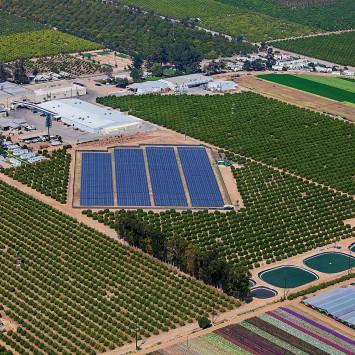 Limoneira_solar_orchard_energy