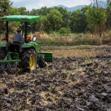 3036E Tractor_Rice_Farming_Disk