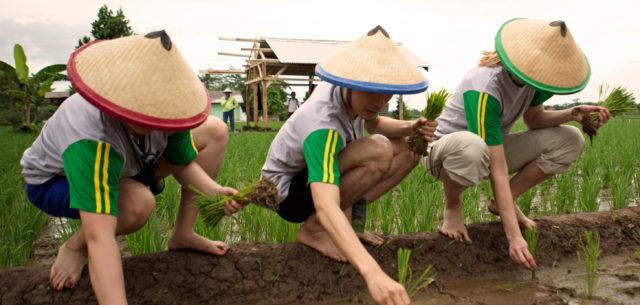 Planting a Future