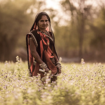 JIVA_Sita_In_Field