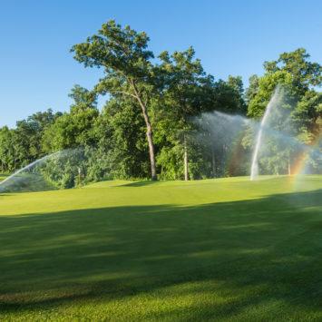 Sprinklers_irrigate
