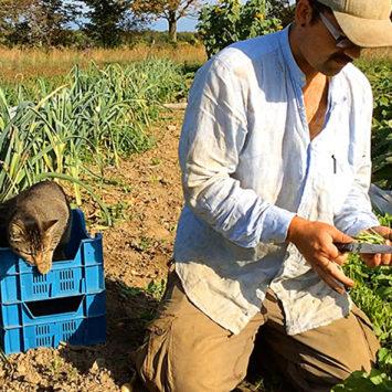 Rosemary_Ken_farm
