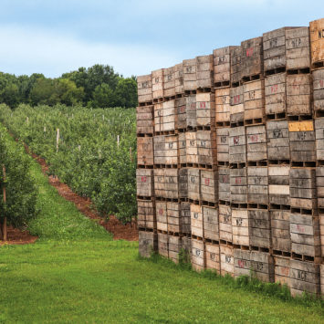 Crates_containers