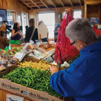 Farm_Market_Produce